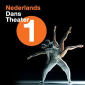 Nederlands Dans Theatre